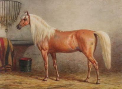 Horse_beyyan-big